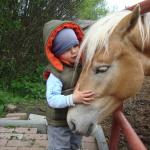 Konie i dzieci