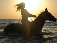 Pomoce jeździeckie – dosiad