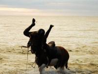 Znów księżniczka Anna spadła z konia czyli krótki poradnik spadania