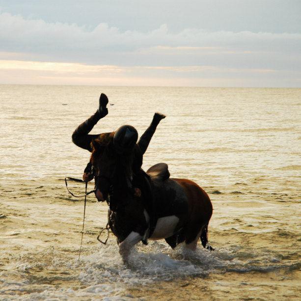 basia spada z konia co za dzida lol