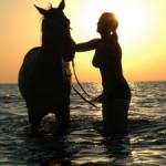 Skojarzenia – koń ma inne niż Ty!