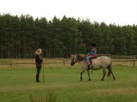 TOP 10. Dziesięć typów instruktorów jeździectwa