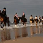 Pomoce jeździeckie – łydka