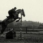 Nasze konie na zawodach czyli śmiechu warte cz. VII