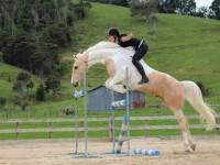 Alycia Burton – free rider