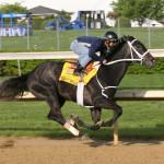 10 legendarnych koni wyścigowych, które wypada znać cz.3