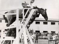 Alberto Larraguibel i Huaso – Rekord Świata w Skoku