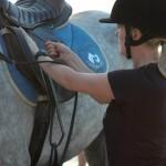 Jak wsiadać na konia i dlaczego ja robię to źle?