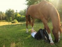 Kocham konie, ale wciąż się boję – jak radzić sobie z paraliżującym strachem?