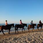 Obóz jeździecki dla dorosłych – fotorelacja