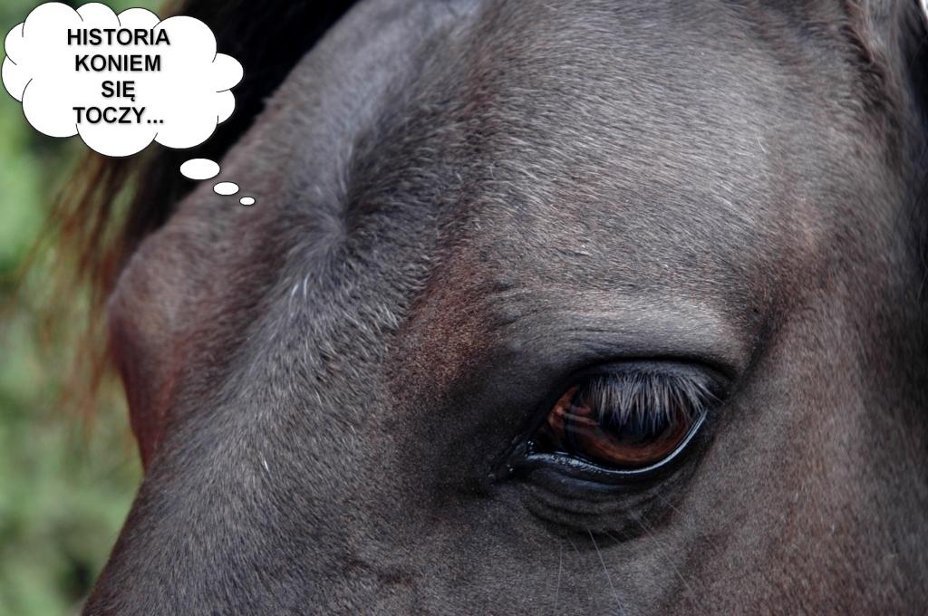 historia-koniem-sie-toczy