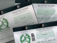 Jak wygląda koński paszport